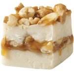 Salted Nut Fudge Roll