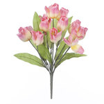 Tulip Bush by OakRidge™