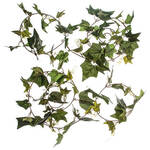 Ivy Garlands, Set of 2 by Oakridge Outdoor™