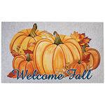 Welcome Fall Doormat