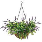 Fully Assembled Lavender Hanging Basket by OakRidge™