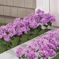 Artificial Light Purple Hydrangeas