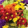 Wildflower Garden Roll - 2'Wx4'L