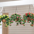 Fully Assembled Begonia Hanging Basket