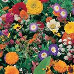 Garden Fragrance Seed Mat