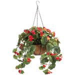 Fully Assembled Begonia Hanging Basket by OakRidge™