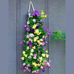 Bag O'Blooms® Shade Loving Pansies